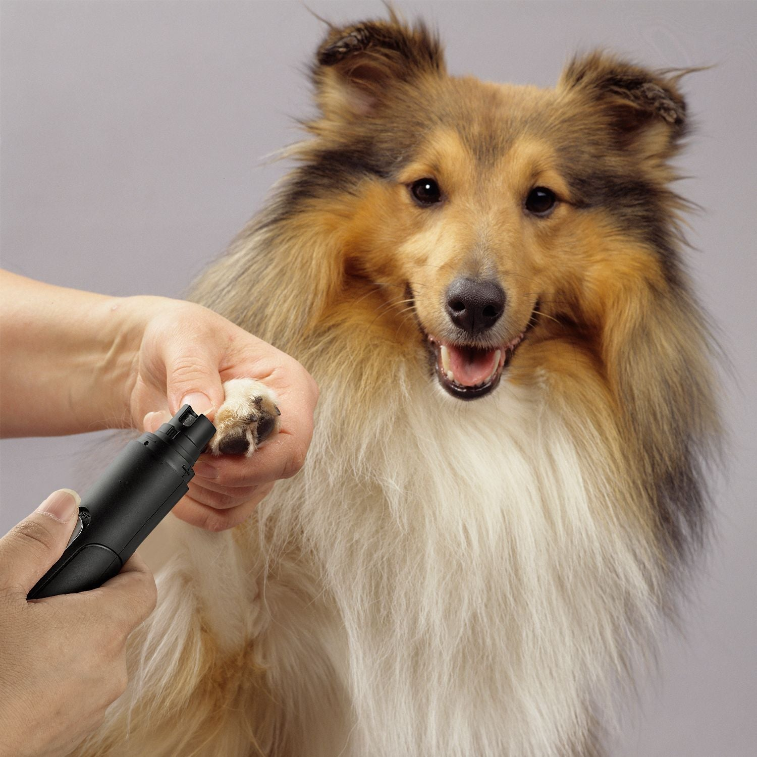 Electric Rechargeable Pet Nail Trimmer Painless Paws Grooming & Smoothing for Dogs & Cats