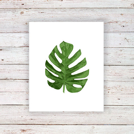 Monstera Deliciosa temporary tattoo - a temporary tattoo by Tattoorary