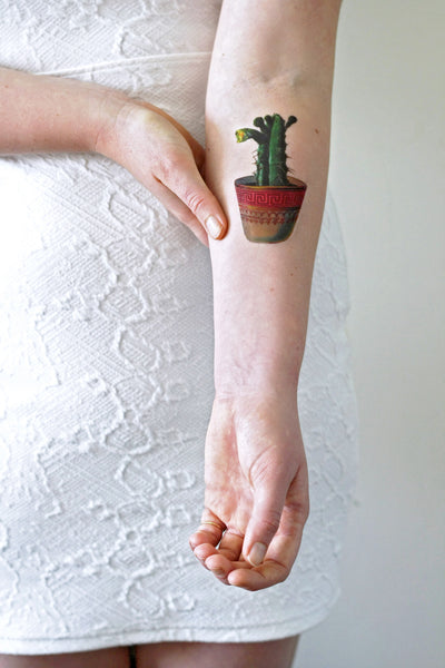 Cactus temporary tattoo - a temporary tattoo by Tattoorary