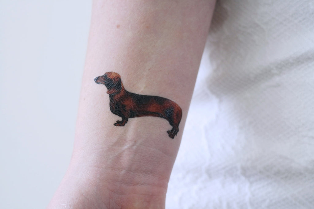 Dachshund dog temporary tattoo - a temporary tattoo by Tattoorary