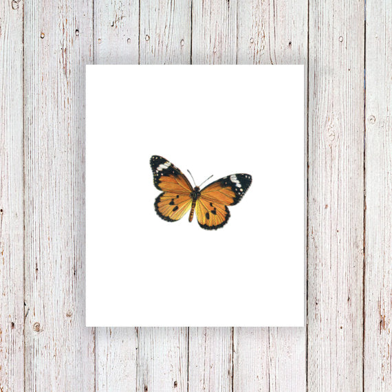 Orange butterfly temporary tattoo - a temporary tattoo by Tattoorary