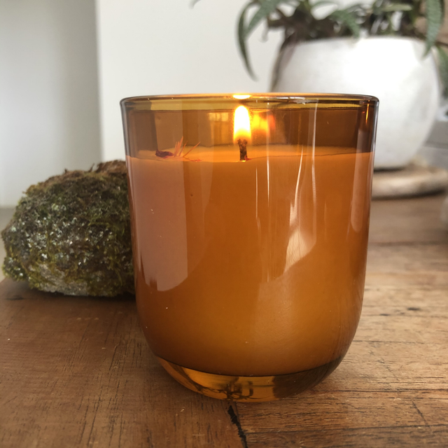Amber Glass Soy Candle - Native Coast