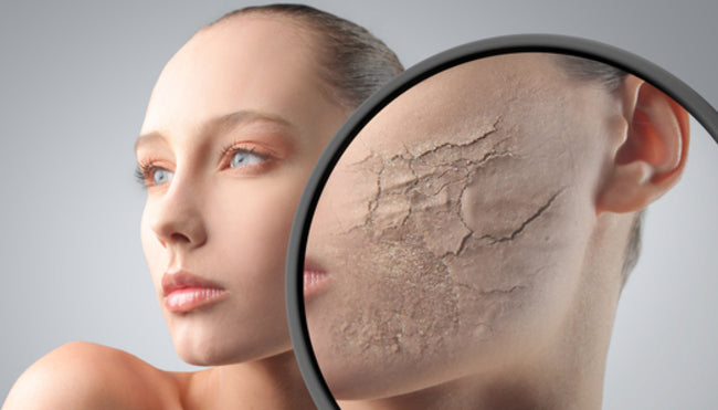 what is face toner used for