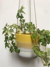 Load image into Gallery viewer, Yellow Mojave Glaze Hanging Planter