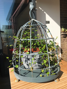 Metal Bird Cage Plant Stand