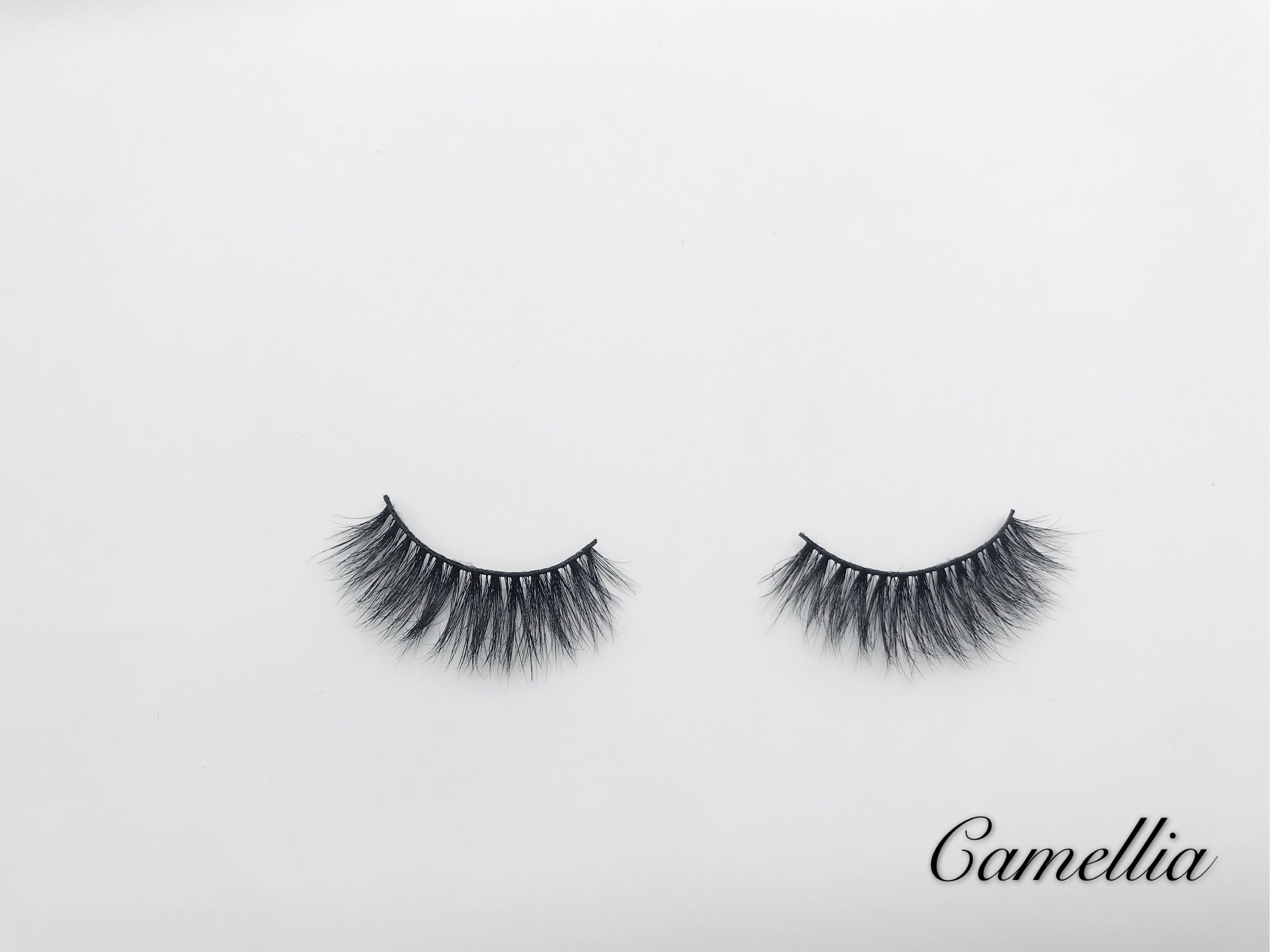 Glamour Volume Round Shape Fluffy Natural Mink Eyelashes-Camellia