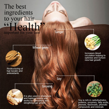 Herbal Ginger Hair Shampoo Essence Treatment For Hair Loss Help Regrowth Increases Flexible Of Hair Care
