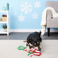 Outward Hound Holiday Fire Biterz Candy Cane Dog Toy