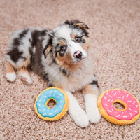 Zippy Paws Mini Donutz - In a variety of 'Flavours'