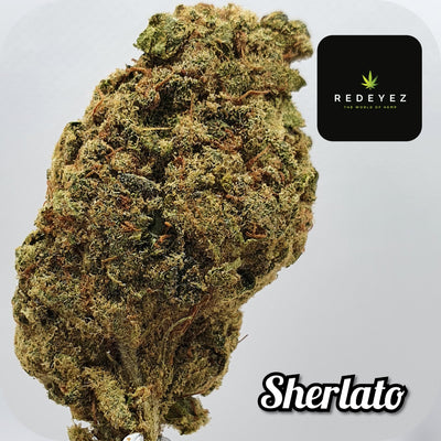 SHERLATO - CBD POT-POURI - Red Eyez - The World Of Hemp