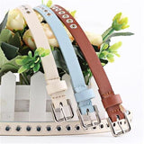 Fashion Studded Women Belt with Fashion Cute Style and Canvas Belt Thin Waist Band Thin Decorative Belt 110cm High Quality