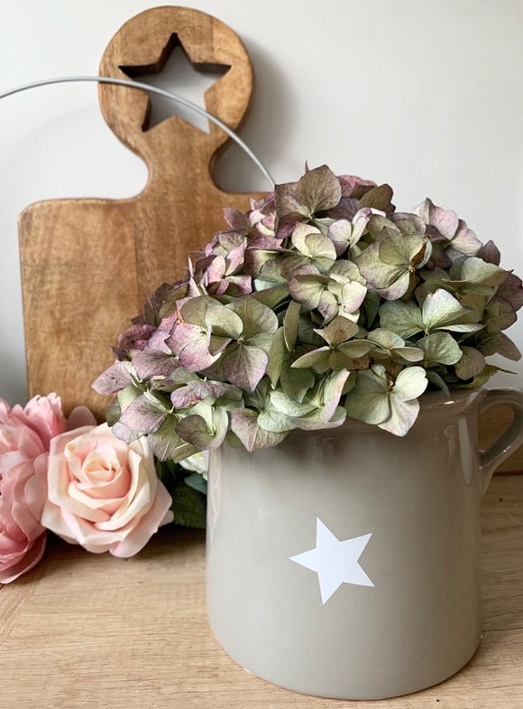 Large Grey Pot with White Star