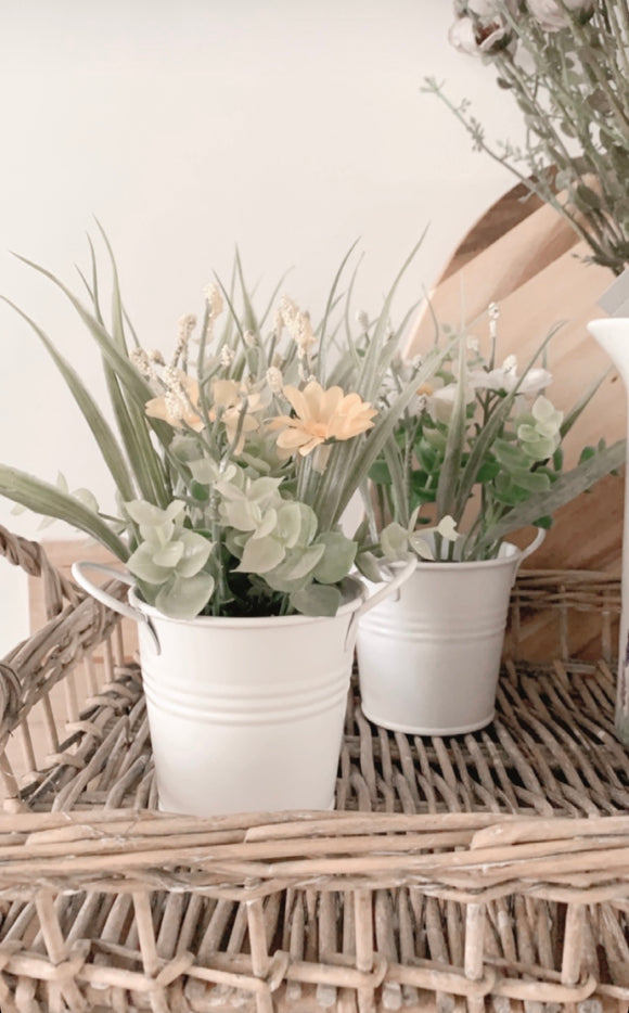 Spring Flower Pots (Set of 2)