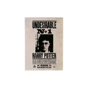 Harry Potter Magnet - Undesirable No1