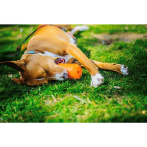 SP Can Toy Durable Rubber Chew Toy & Treat Dispenser - Orange Squeeze
