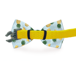 Load image into Gallery viewer, Chili Pepper Dog Bow Tie Black