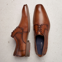 Lloyd Labell Shoes in Brown