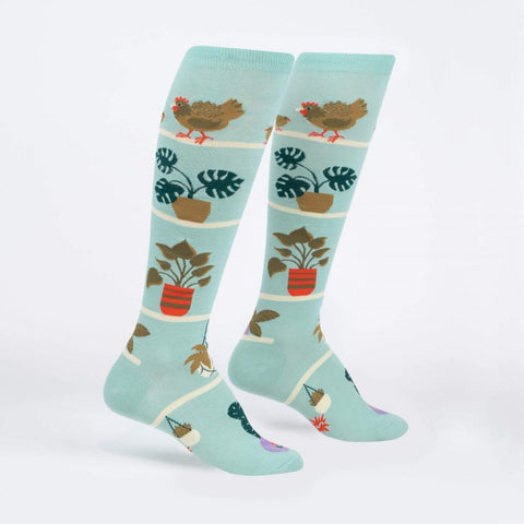Hens And Chicks Women's Knee Highs