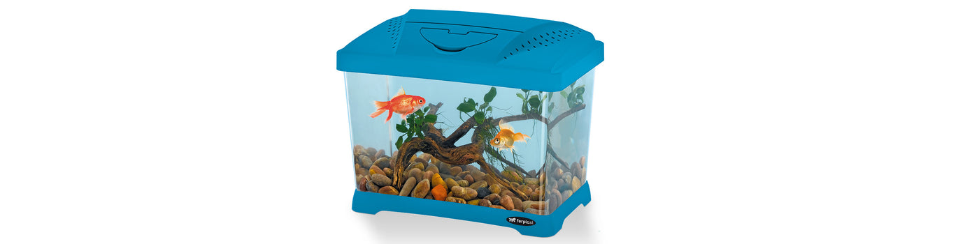 PLASTIC AQUARIUMS AND FISH TANKS