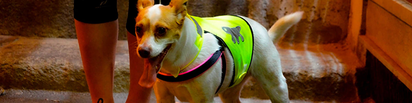 REFLECTIVE DOG COATS