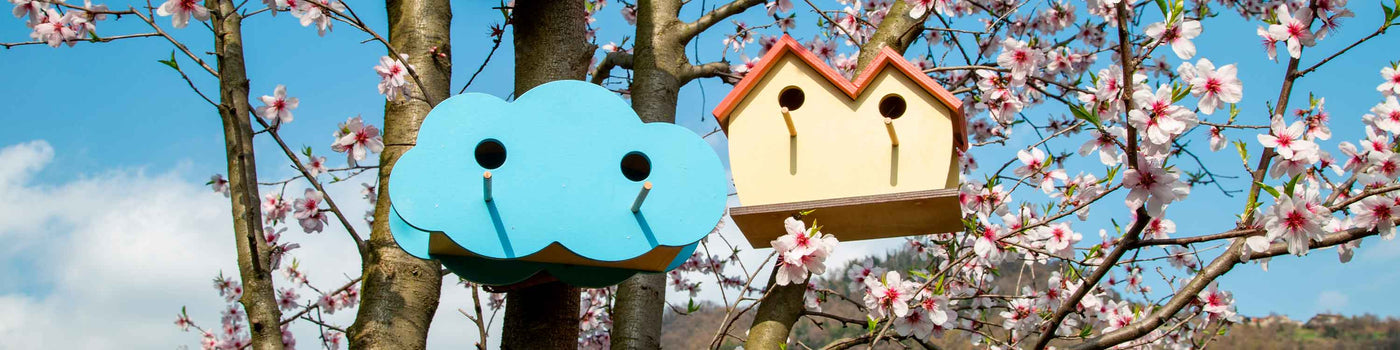 WILD BIRD NESTS AND FEEDERS
