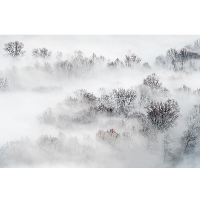 Misty Treetops freeshipping - Beautiful Spaces Store