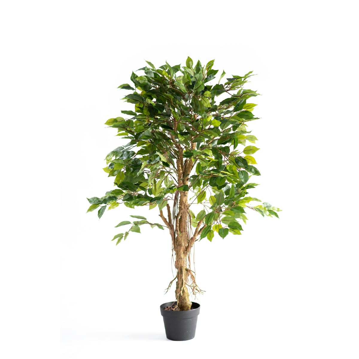 Ficus Tree Real Touch 120cm freeshipping - Beautiful Spaces Store
