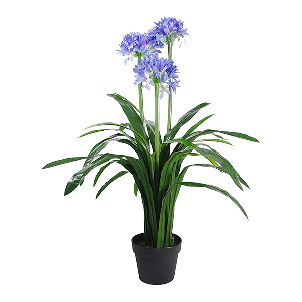 Agapanthus 103cm freeshipping - Beautiful Spaces Store