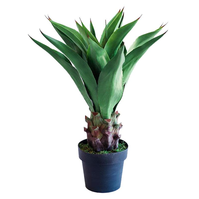 Agave Middle 90cm freeshipping - Beautiful Spaces Store