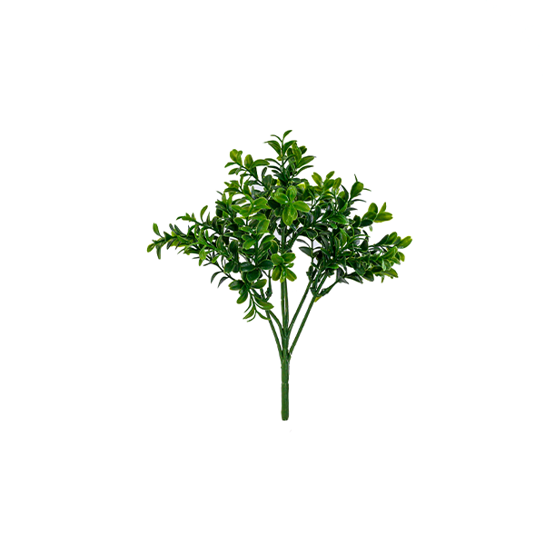 Boxwood Bush 27cm freeshipping - Beautiful Spaces Store