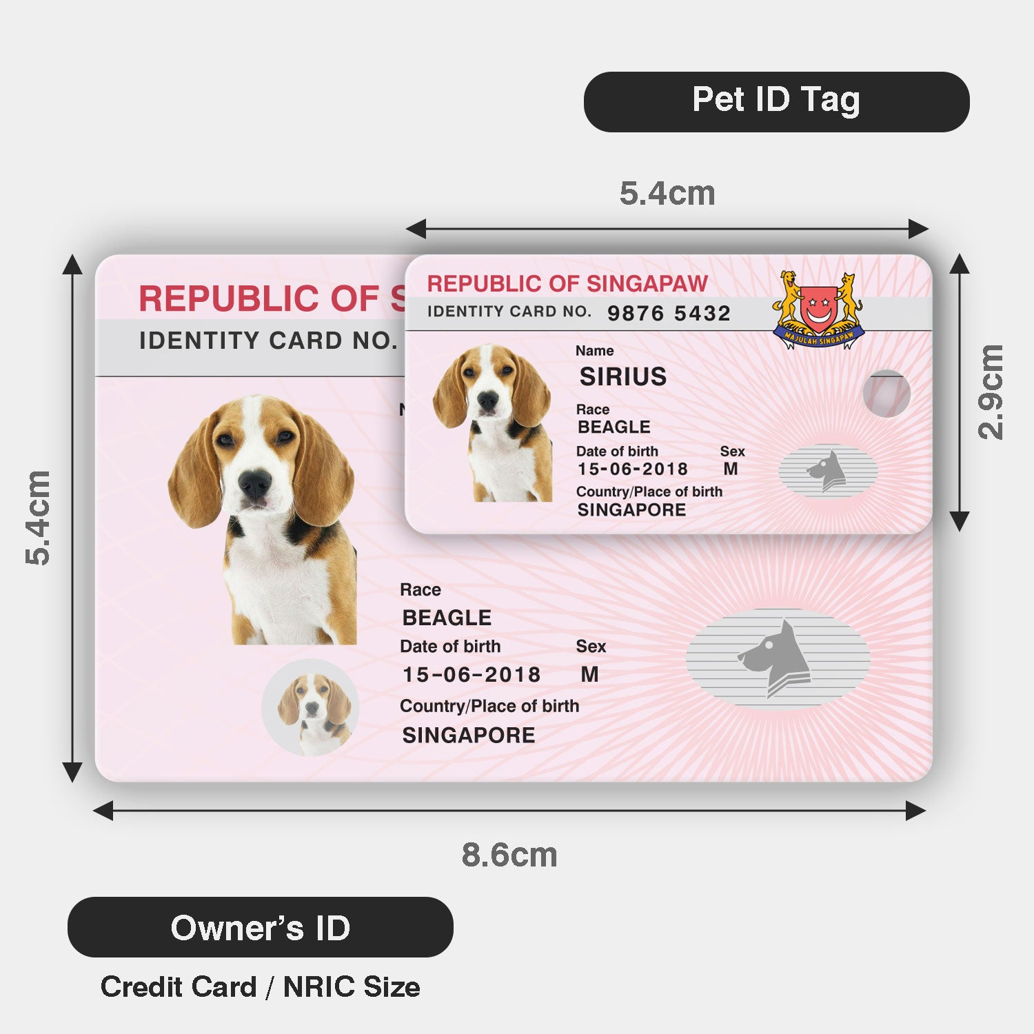 Scale of pet ID tag and owner's ID