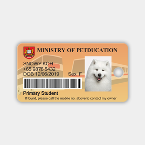 Petducation Primary Student Pass - Snowy Koh