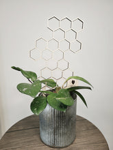 Load image into Gallery viewer, Geometric Plant Trellis - Honeycomb