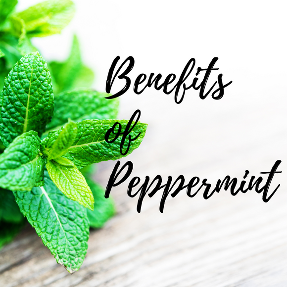 Benefits and uses of Peppermint