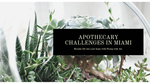 Overcoming Obstacles with Apothecary in Miami, Florida