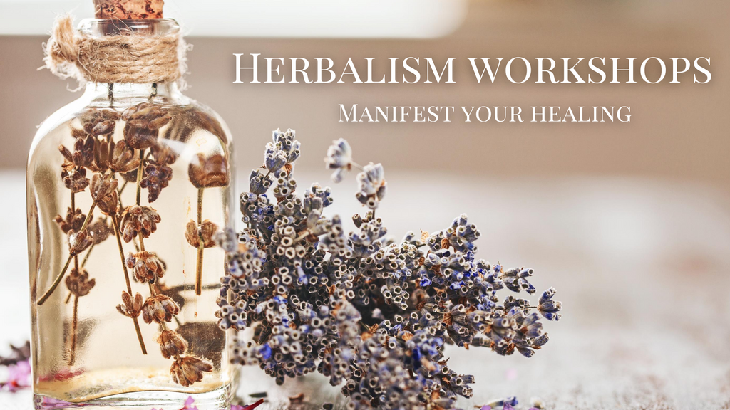herbalism witchcraft classes online for beginner herb and medicine