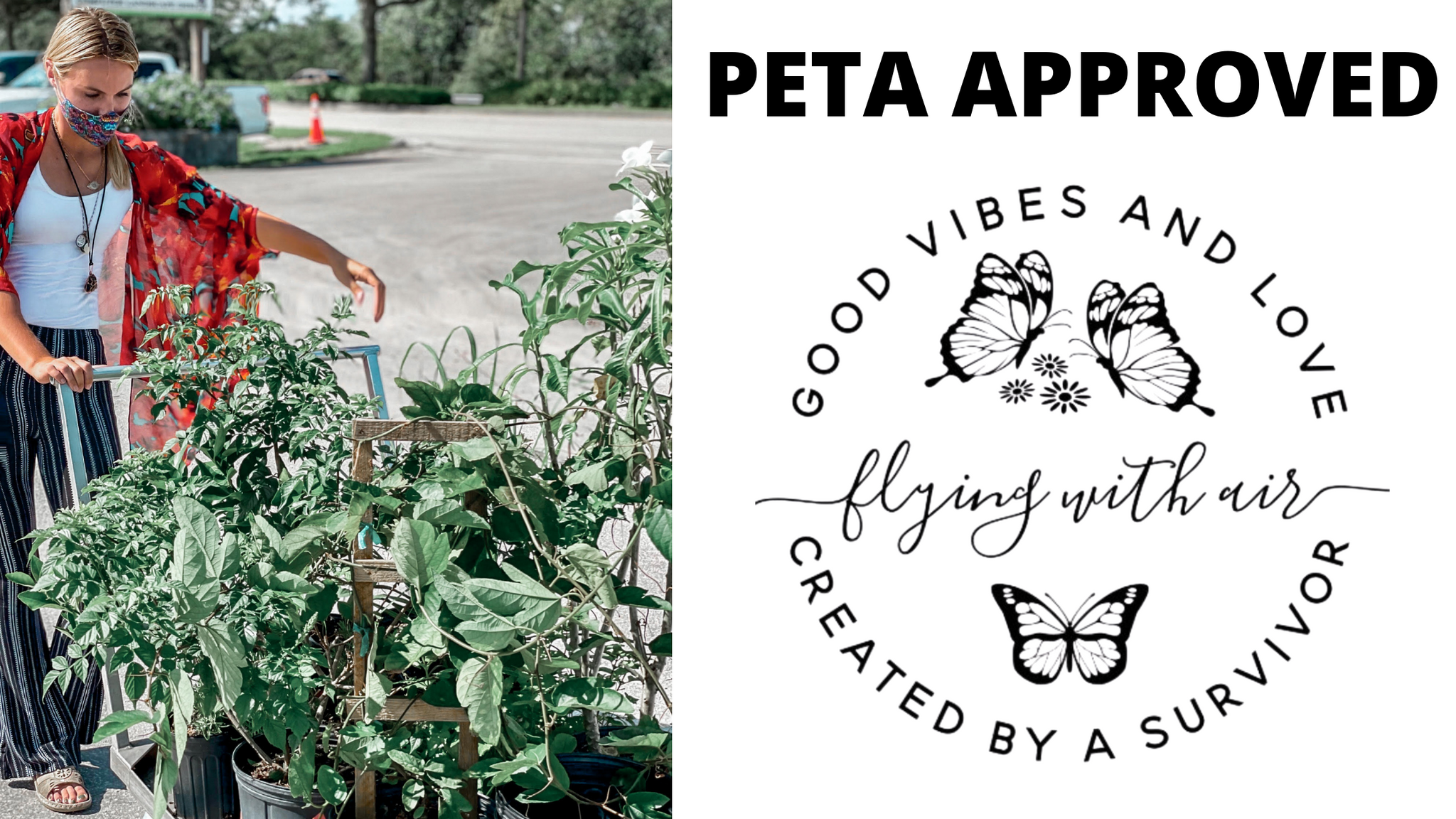 peta approved miami business shop flying with air apothecary