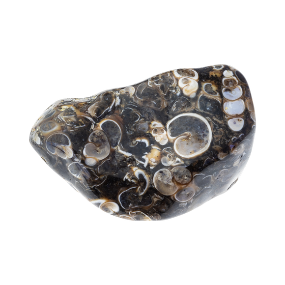 Agate Spotted Polished Tumbled Crystal