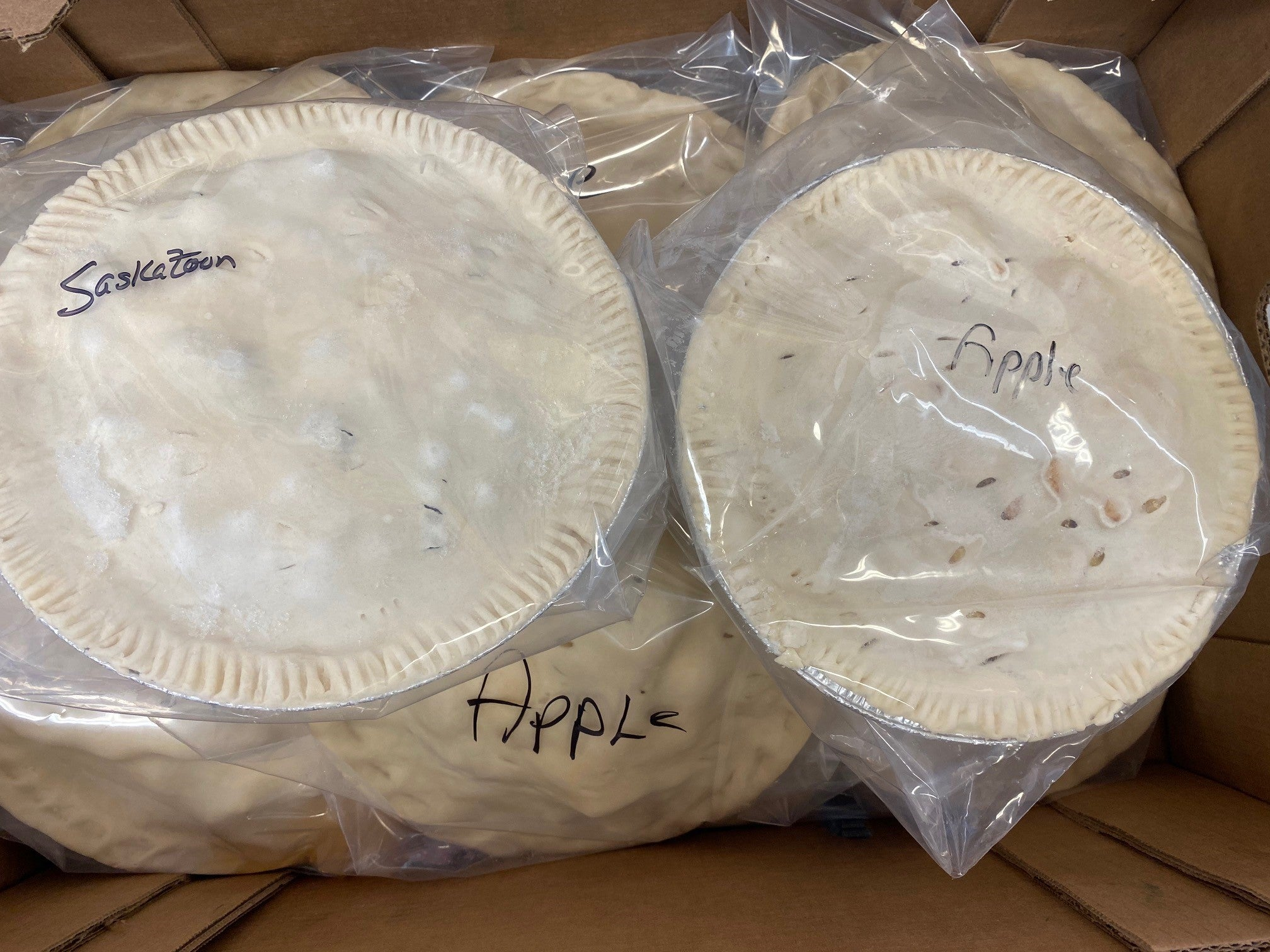 -Grab & Go:  Farm Fresh Pies from the Hutterite Farm (Apple & Saskatoon)