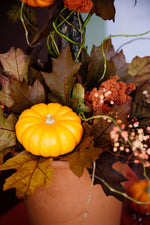 Load image into Gallery viewer, The Pumpkin Patch