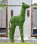 Load image into Gallery viewer, Giraffe Topiary