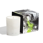 Load image into Gallery viewer, Pigmint Arôme - Candle - Currant Noir