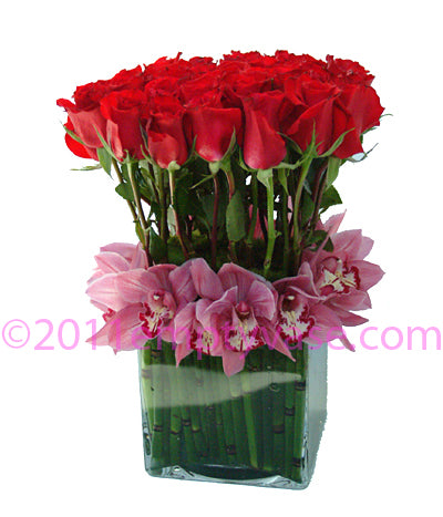 Colorful Roses with Orchids in Horsetail