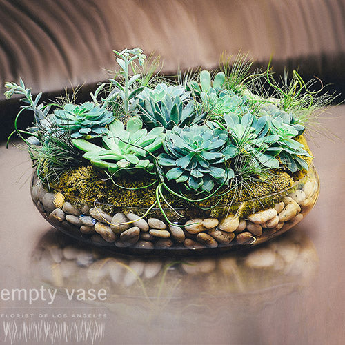 Sensational Succulents