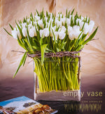 Load image into Gallery viewer, Sumptuous Tulips