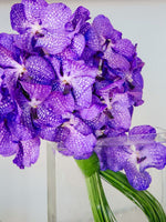 Load image into Gallery viewer, The Orchid Infinity