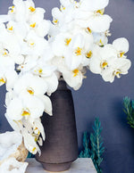 Load image into Gallery viewer, White Orchid Opulence