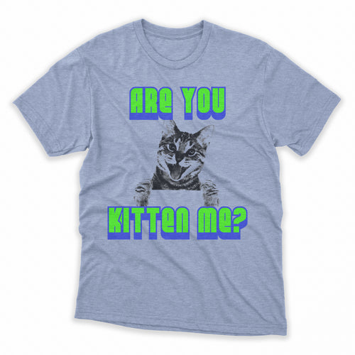 Are You Kitten Me Mens Shirt