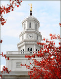 Nauvoo Red Leaves Over Spire