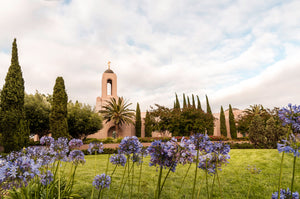 Newport Beach Temple Blooming Afternoon